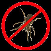 spinvrij spinnenbestrijding